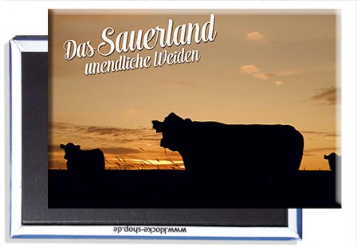 Photo-Magnet Sauerland 2410