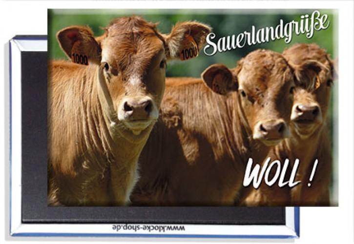 Photo-Magnet Sauerland 2411