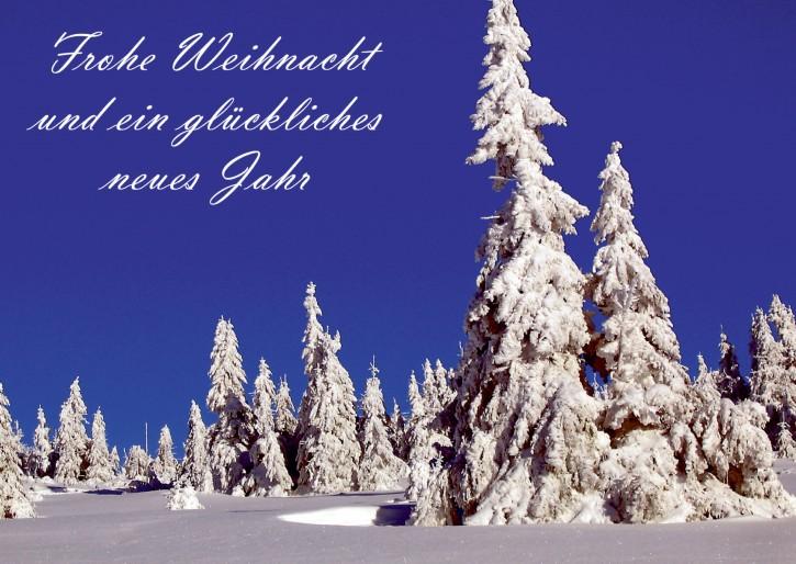 Weihnachtspostkarte Winterberg 59955-04
