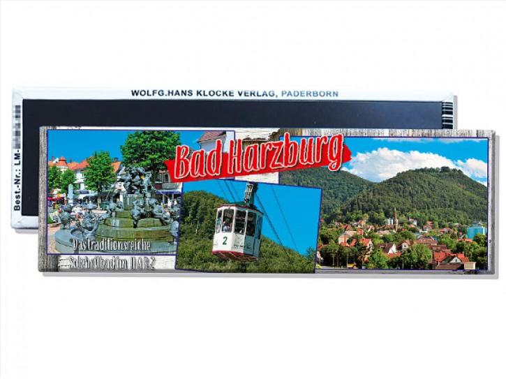 Lang-Magnet Bad Harzburg 9010