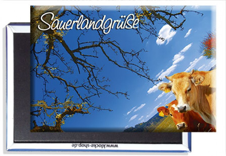 Photo-Magnet Sauerland 0940