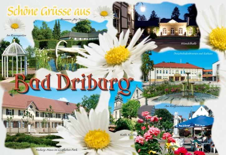 MAXI-CARDS Bad Driburg 2005