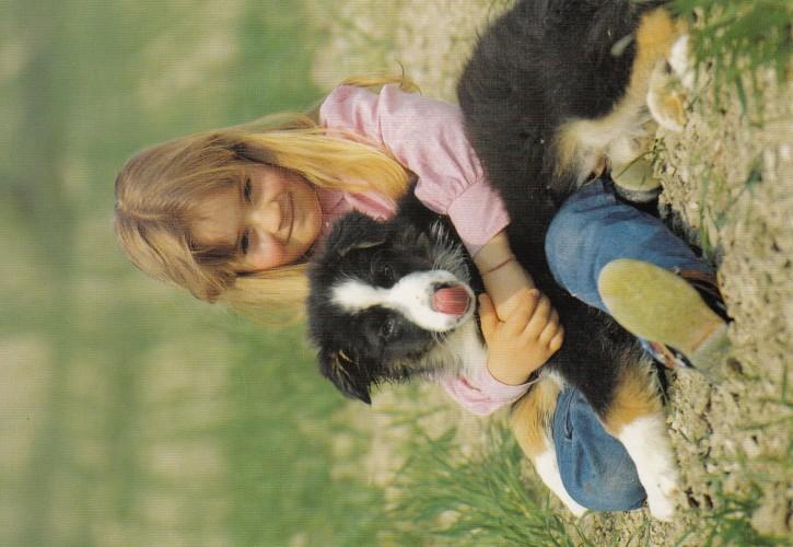 Tierpostkarte Hunde 102-4