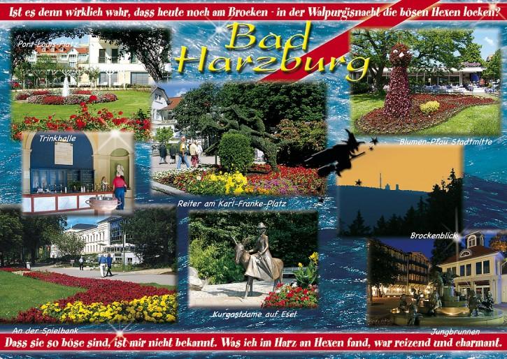 Bad Harzburg 2767