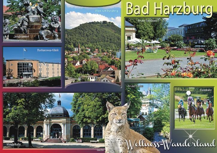 Bad Harzburg 2776