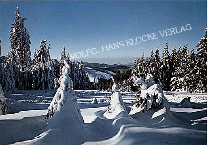Harz W139