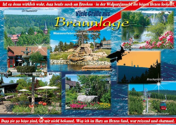 Braunlage 7299
