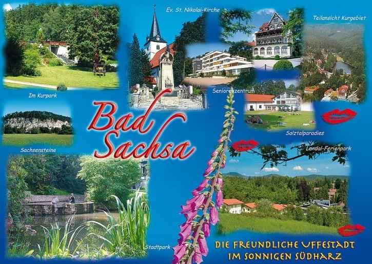 Bad Sachsa 459