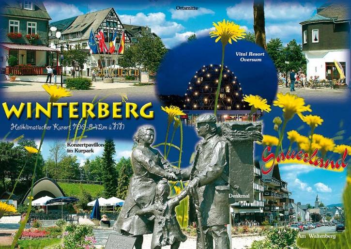 Winterberg 6403