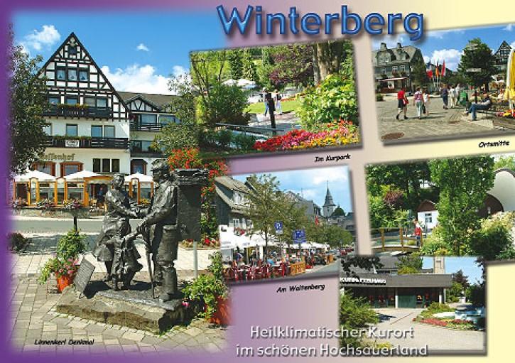 MAXI-CARDS Winterberg 6603